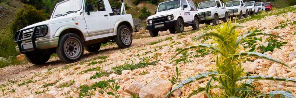 Сафари на острове Крит (фото 2)